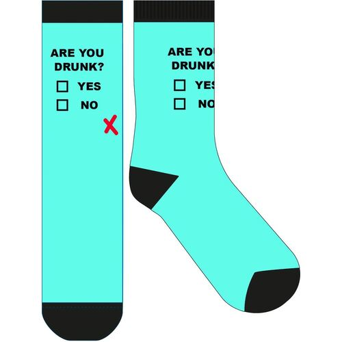 Frankly Funny Novelty Socks - Are You Drunk
